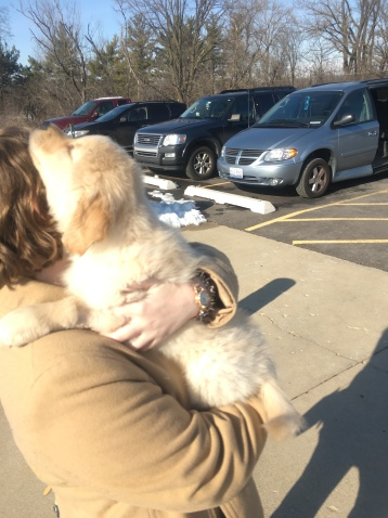 Cary Meeting Anna FIrst Time outside Vet 11-24-2015 11-52-46 AM