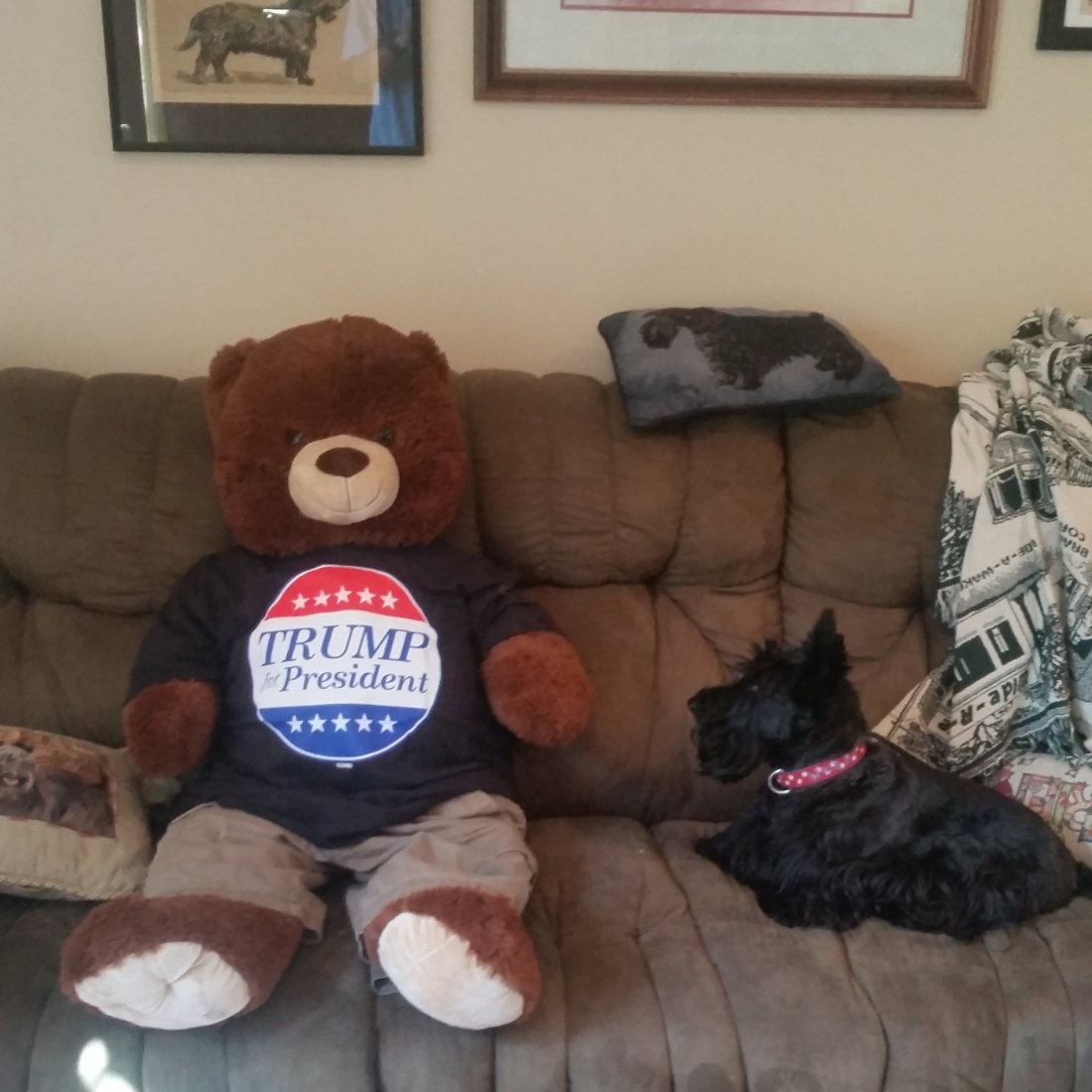 ainsley and mr. bear 9-27-2015 2-49-35 PM
