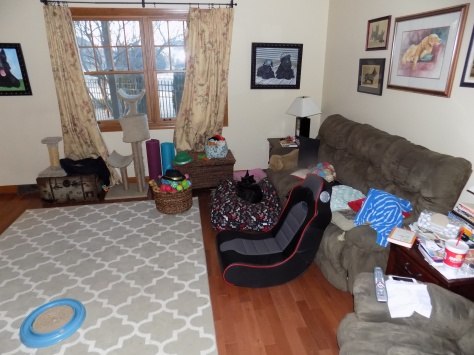 ainsley in living room 2-22-2016 7-01-25 AM