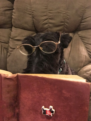 Ainsley reading
